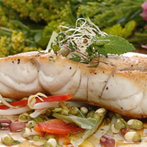 Baked Gulf Grouper with Lime Cilantro Butter